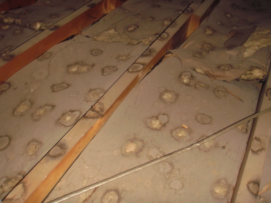 Moisture Problems In Attic Building Consultants Inc